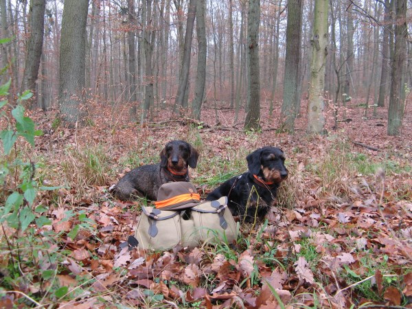 Egbert en Jacob Jacht rugzak